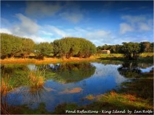 Scenery near King Island Accommodation