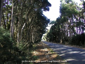 King Island Accommodation